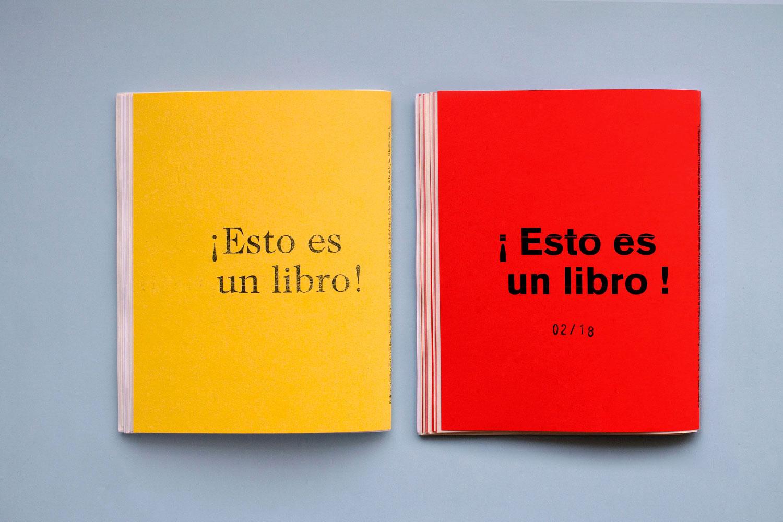 kitschic-que-es-un-libro-33