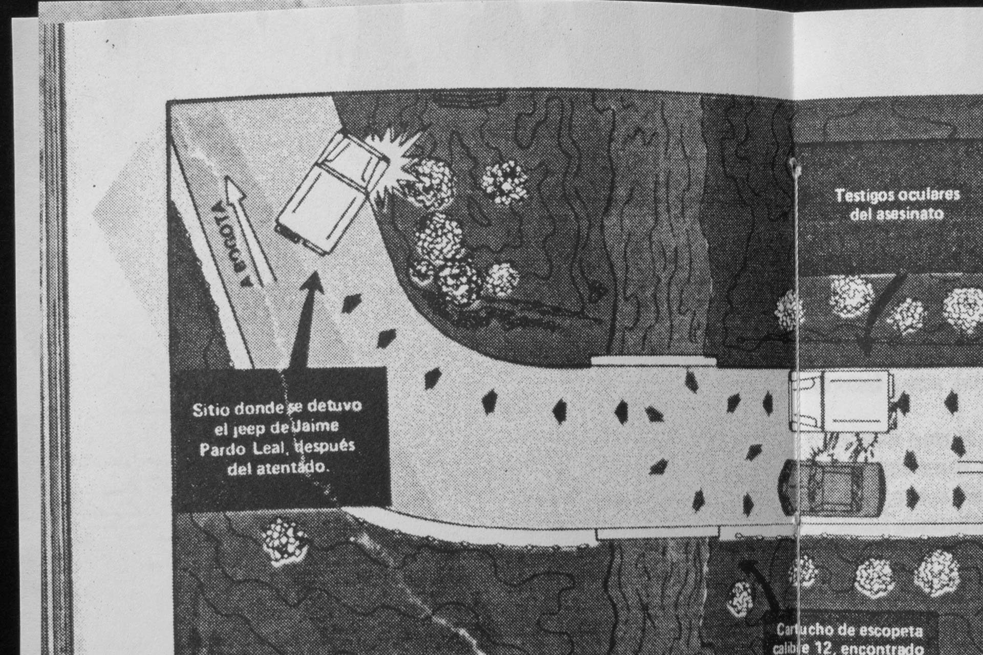 kitschic-fabio-morais-36-20